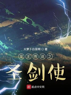 龙王传说之圣剑使